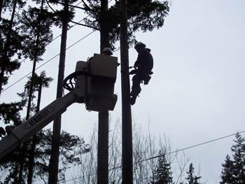 Utility Pole Inspection