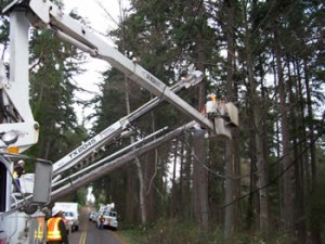 Power Line Construction - NW Utility Services LLCNW Utility Services LLC
