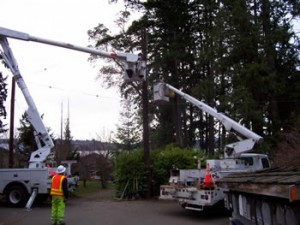 Power Line Construction - NW Utility Services LLCNW Utility